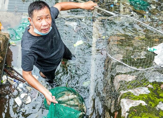 Sông Tô Lịch bất ngờ xanh, nhiều người dân vui mừng bắt hàng tạ cá - Ảnh 8.