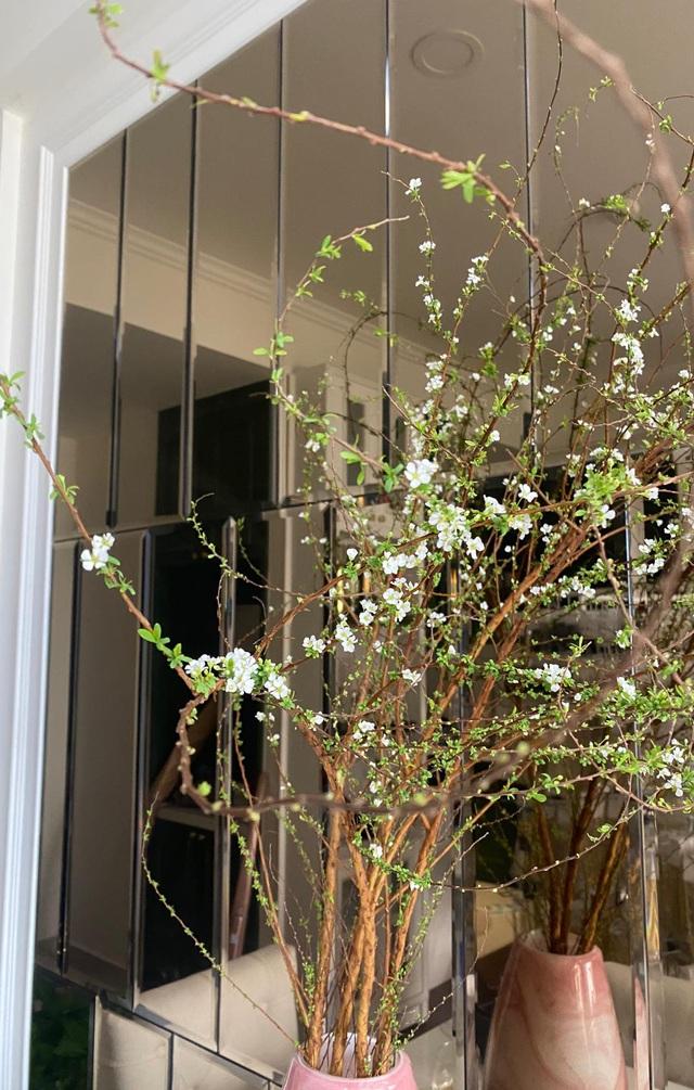 Căn hộ vừa đẹp vừa sang của Hồng Loan sáng bừng vì hoa dịp Tết - Ảnh 11.