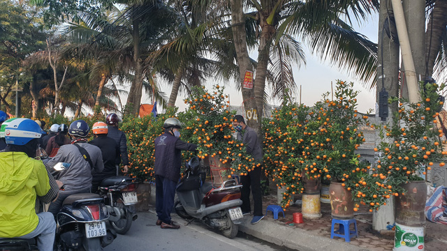 Người dân Hà Nội hối hả mang hoa về nhà trong ngày cuối của năm Âm lịch - Ảnh 8.