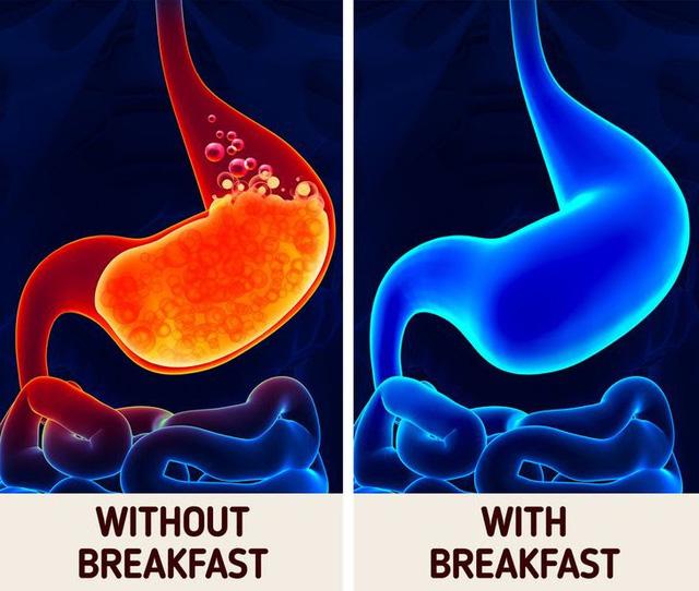 Nhịn ăn sáng ảnh hưởng đến cơ thể như thế nào? - ảnh 6
