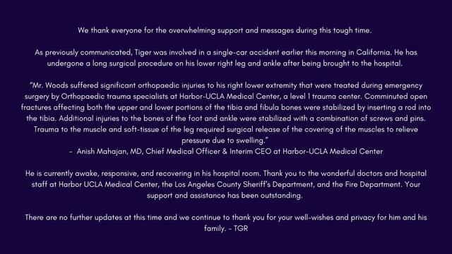 Sau tại nạn, Tiger Woods hiện đã tỉnh táo và đang trong quá trình hồi phục - Ảnh 1.