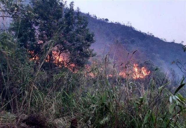 Vụ cháy rừng tại huyện Tam Đường - Lai Châu: Lửa bùng trở lại và lan rộng - Ảnh 2.