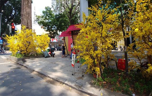 Đường phố TP Hồ Chí Minh vắng tanh trong ngày 28 Tết - Ảnh 8.