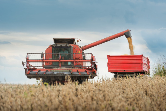 Giá nông sản thế giới tăng vọt, nhiều nước châu Âu bối rối - Ảnh 2.