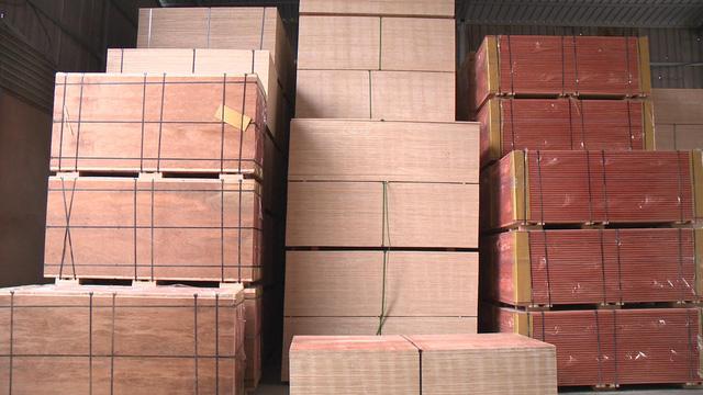 Tấp nập đơn hàng xuất khẩu gỗ đầu năm - Ảnh 1.