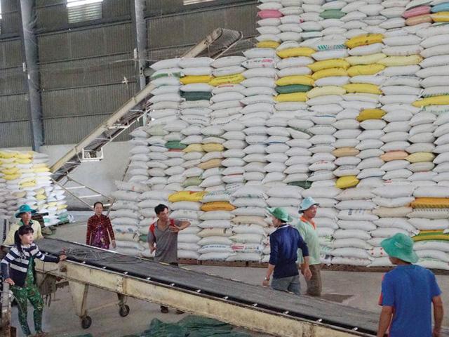 Giá gạo Việt Nam tăng mạnh - Ảnh 1.