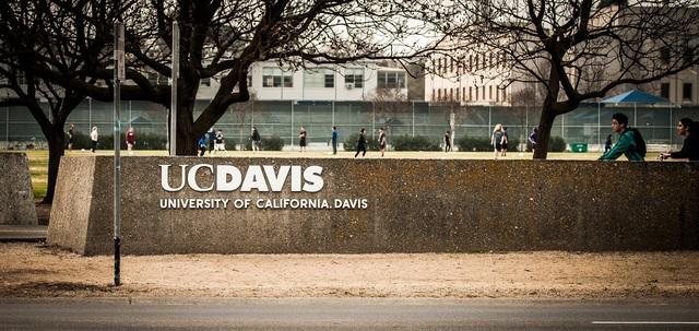 Trường đại học thưởng tiền để sinh viên không du lịch trong kỳ nghỉ - Ảnh 3.