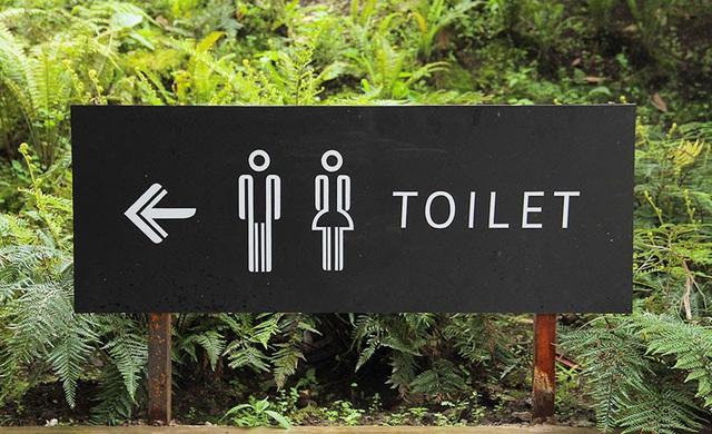 """Thú vị, """"văn hóa nhà vệ sinh"""" đa dạng trên thế giới - ảnh 3"""