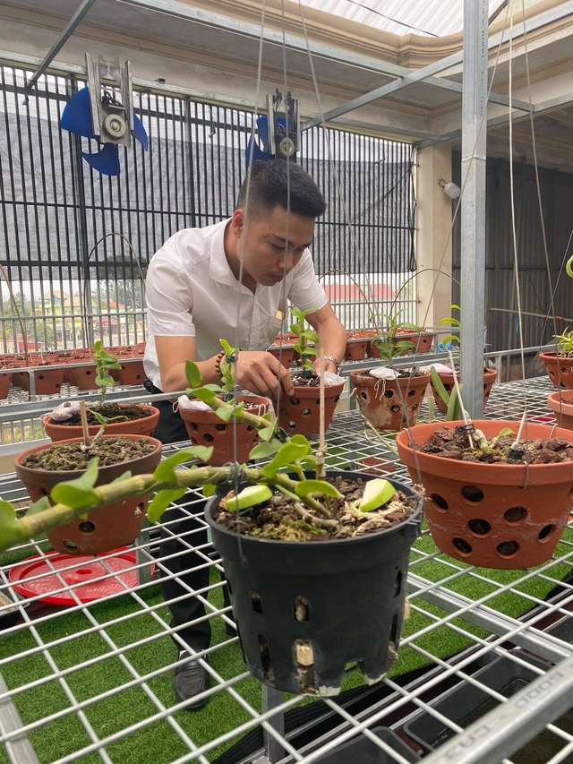 Doanh nhân Nguyễn Văn Thắng sở hữu vườn lan Var độc đáo trên sân thượng - Ảnh 1.