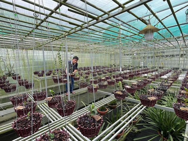 Trương Tuấn Anh chia sẻ bí kíp để thành công trong nuôi trồng hoa lan - Ảnh 3.