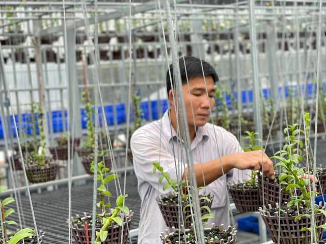 Trương Tuấn Anh chia sẻ bí kíp để thành công trong nuôi trồng hoa lan - Ảnh 5.