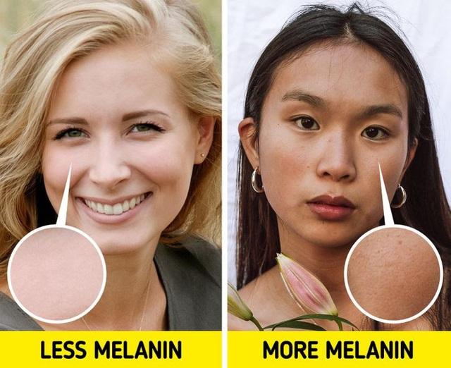 Tại sao người châu Á chậm lão hóa hơn? - Ảnh 2.