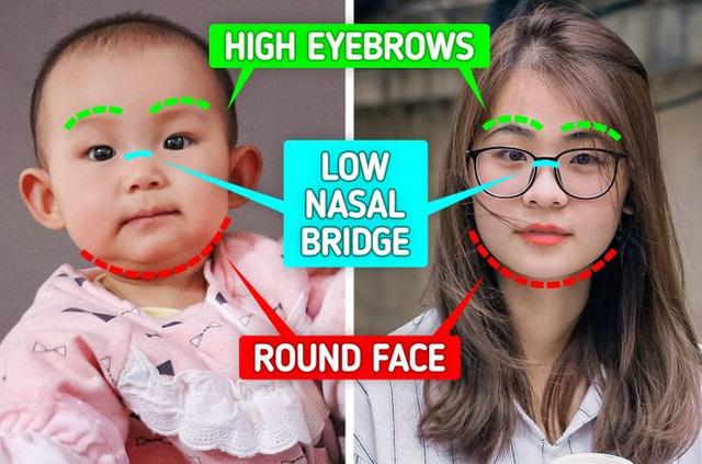 Tại sao người châu Á chậm lão hóa hơn? - Ảnh 5.