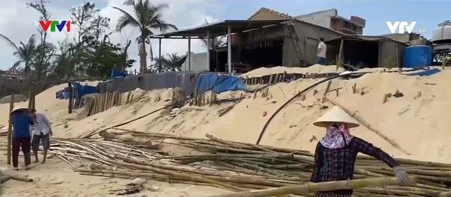 Nhiều hộ dân bất an vì nạn sạt lở bờ biển - Ảnh 1.