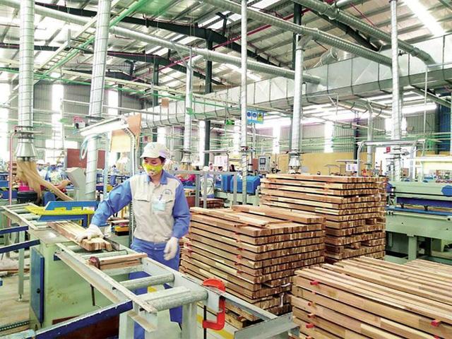 Kiểm soát tính hợp pháp của gỗ nhiệt đới nhập khẩu - ảnh 1