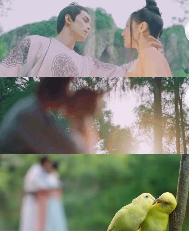 Cảnh hôn của Địch Lệ Nhiệt Ba trong Trường ca hành được làm mờ bằng hai chú chim - Ảnh 1.
