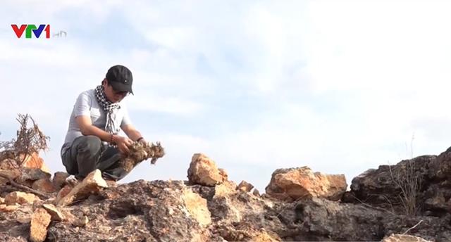 Bãi đá cổ hàng triệu năm bị đào xới tan hoang - Ảnh 1.