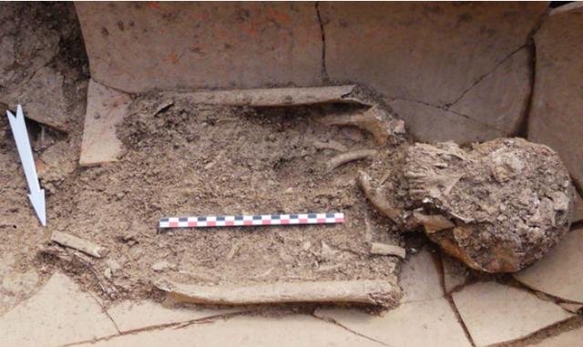 Phát hiện 40 mộ cổ với hài cốt chôn trong bình - Ảnh 2.