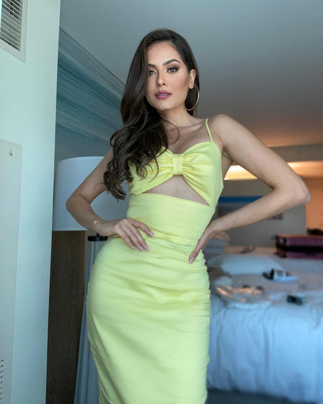 Nhan sắc tân Hoa hậu hoàn vũ thế giới 2020 - Ảnh 5.