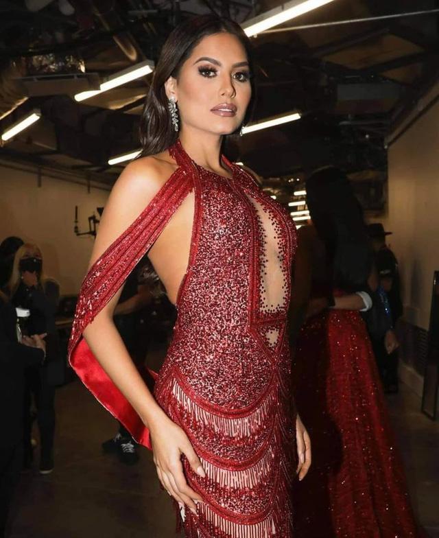 Nhan sắc tân Hoa hậu hoàn vũ thế giới 2020 - Ảnh 1.