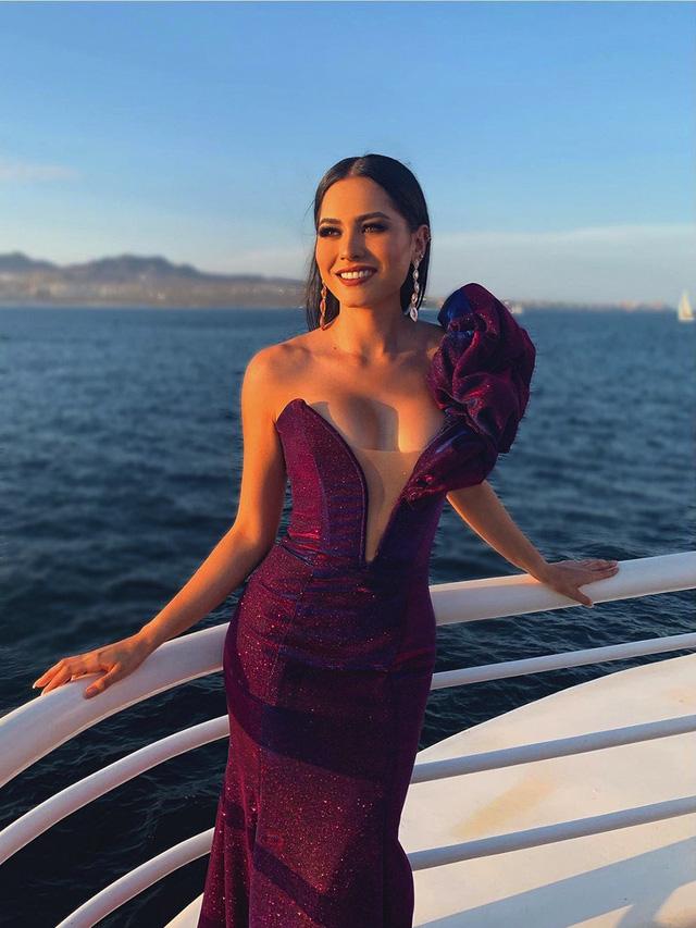 Nhan sắc tân Hoa hậu hoàn vũ thế giới 2020 - Ảnh 8.