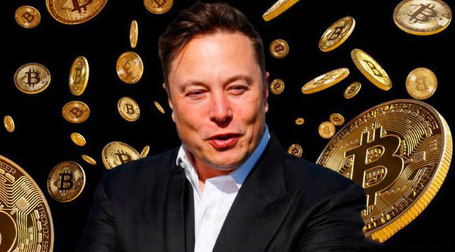 Elon Musk mất ngôi giàu số 2 thế giới - ảnh 2