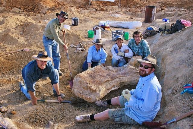 Phát hiện loài khủng long mới có kích cỡ khổng lồ tại Australia - Ảnh 3.
