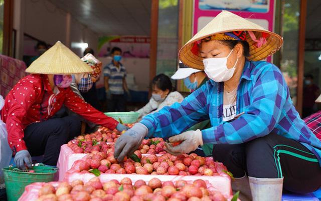 Hơn 98.000 tấn vải thiều Bắc Giang đã được tiêu thụ - ảnh 1
