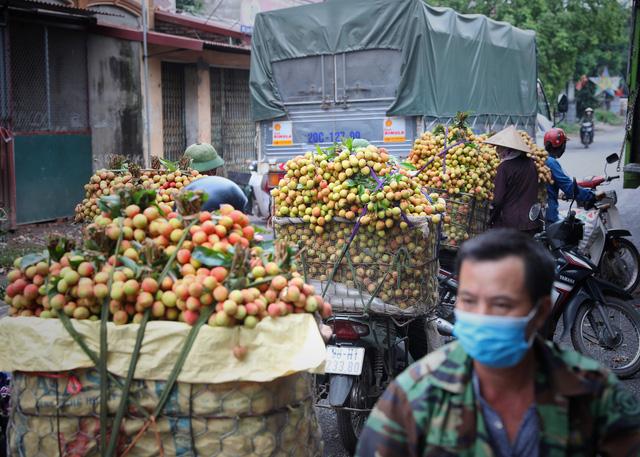Bắc Giang tổ chức hội nghị trực tuyến tiêu thụ vải thiều - Ảnh 1.