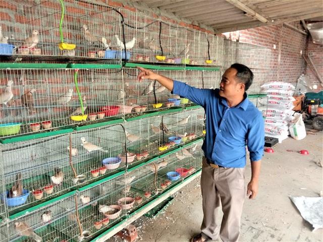 Tháng hành động vì môi trường suy nghĩ về thú chơi chim cảnh - Ảnh 3.