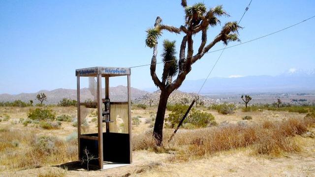 6 thứ kỳ lạ nhất từng được tìm thấy tại sa mạc - ảnh 4