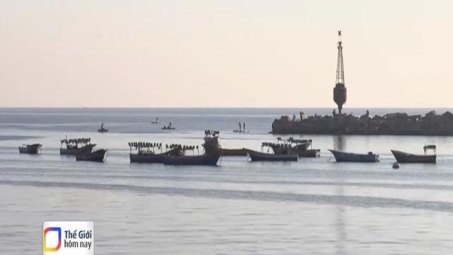 20 năm WTO chưa thống nhất được thỏa thuận trợ cấp nghề cá - Ảnh 2.