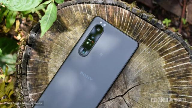 Sony làm được điều mà LG phải chấp nhận từ bỏ - ảnh 3