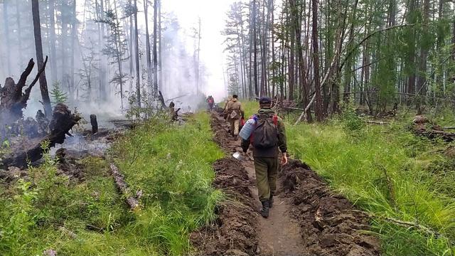 Siberia đối mặt với cháy rừng sau tháng 6 khô nóng  nhất trong 133 năm qua - Ảnh 1.