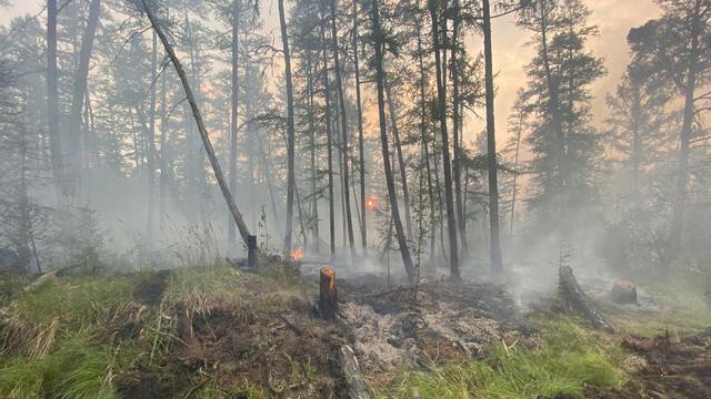 Siberia đối mặt với cháy rừng sau tháng 6 khô nóng  nhất trong 133 năm qua - Ảnh 2.