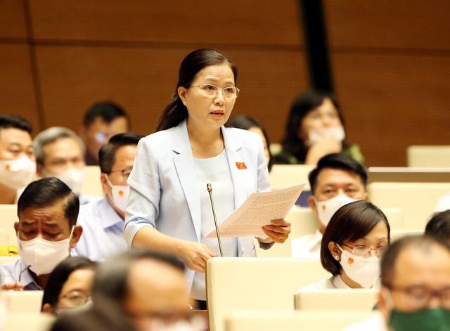 ĐBQH Nguyễn Lân Hiếu đề xuất 3 nguyên tắc và 3 tầng chống dịch COVID-19 - Ảnh 1.