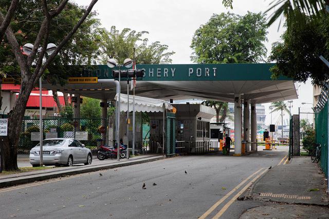 Ghi nhận 660 ca mắc tại ổ dịch ở cảng cá, Singapore gấp rút truy vết chuỗi lây nhiễm - Ảnh 1.