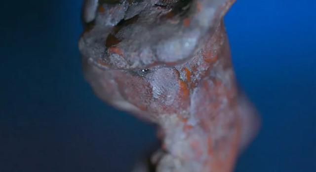 Tìm thấy dấu vân tay của nghệ sĩ thời Phục hưng Michelangelo trên bức tượng sáp - Ảnh 1.