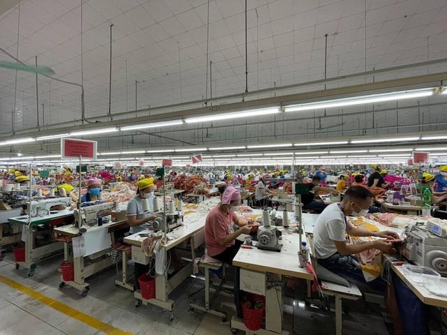 12.000 lao động được trả lương từ gói hỗ trợ 7.500 tỷ đồng - Ảnh 1.