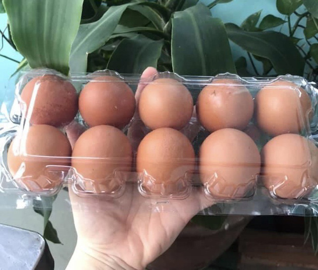 Trứng gà tăng giá gấp đôi vẫn cháy hàng - Ảnh 2.