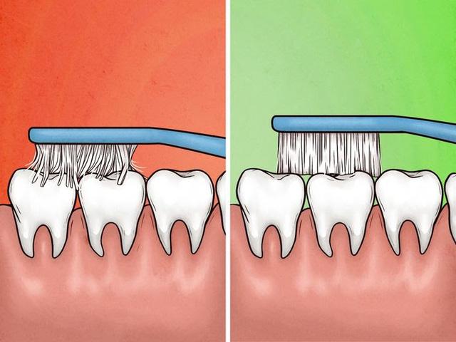 4 dấu hiệu cho thấy bạn đang đánh răng sai cách - Ảnh 5.