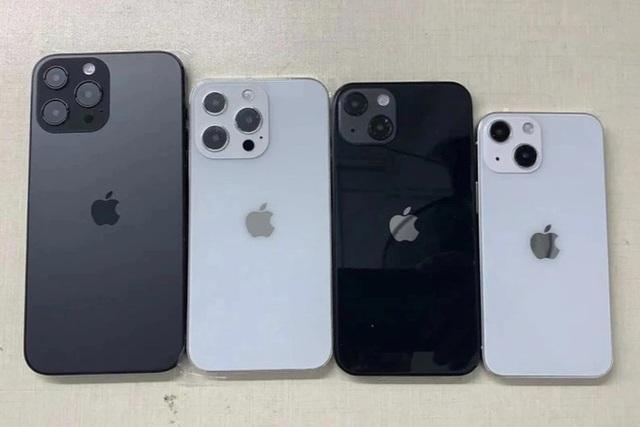 Chiếc iPhone nào sẽ bị khai tử khi Apple ra mắt iPhone 13? - Ảnh 1.