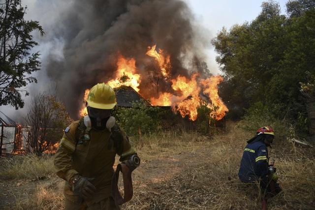 Cháy rừng bùng phát ở Hy Lạp khiến nhiều người bị thương - Ảnh 5.