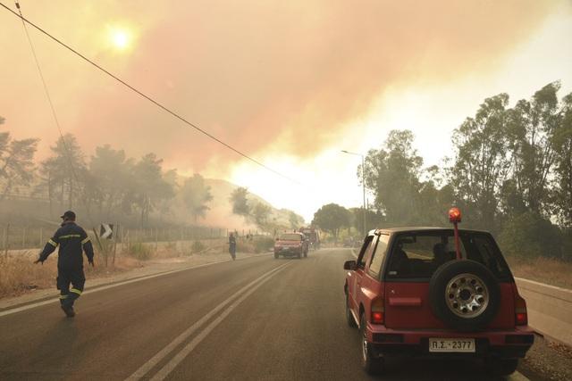 Cháy rừng bùng phát ở Hy Lạp khiến nhiều người bị thương - Ảnh 3.
