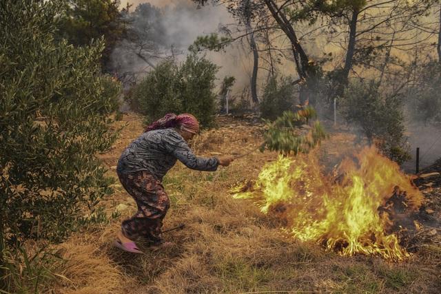Cháy rừng ở Thổ Nhĩ Kỳ: Số nạn nhân thiệt mạng tăng lên 8 người, du khách sơ tán khẩn cấp - Ảnh 4.