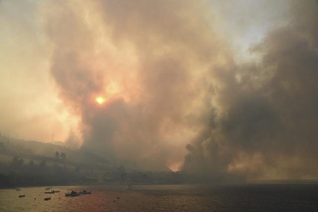 Cháy rừng thiêu rụi hàng chục nhà dân tại Hy Lạp - Ảnh 1.
