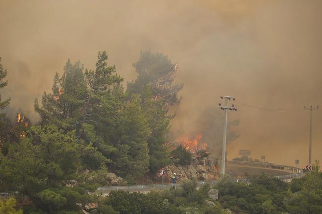 Cháy rừng ở Thổ Nhĩ Kỳ: Số nạn nhân thiệt mạng tăng lên 8 người, du khách sơ tán khẩn cấp - Ảnh 1.