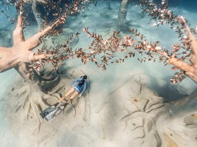 Độc đáo triển lãm nghệ thuật dưới nước tại đảo Cyprus - ảnh 1