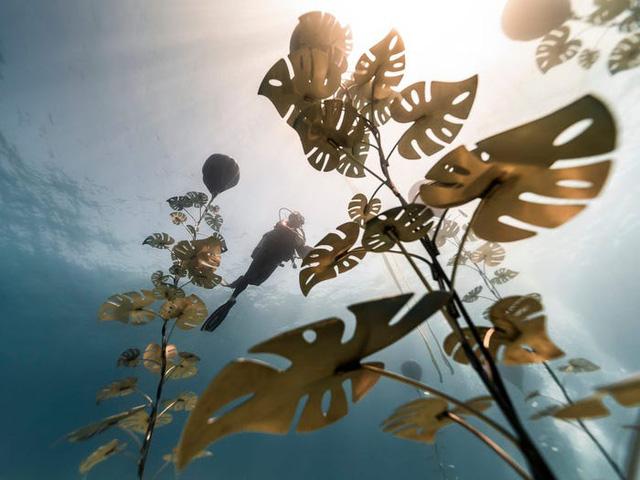 Độc đáo triển lãm nghệ thuật dưới nước tại đảo Cyprus - ảnh 4