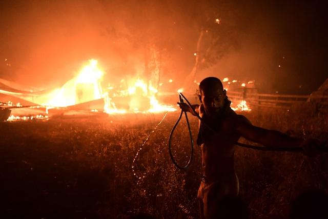 Cháy rừng tiếp tục hoành hành tại Hy Lạp trong đợt nắng nóng tồi tệ nhất hơn 30 năm qua - Ảnh 3.